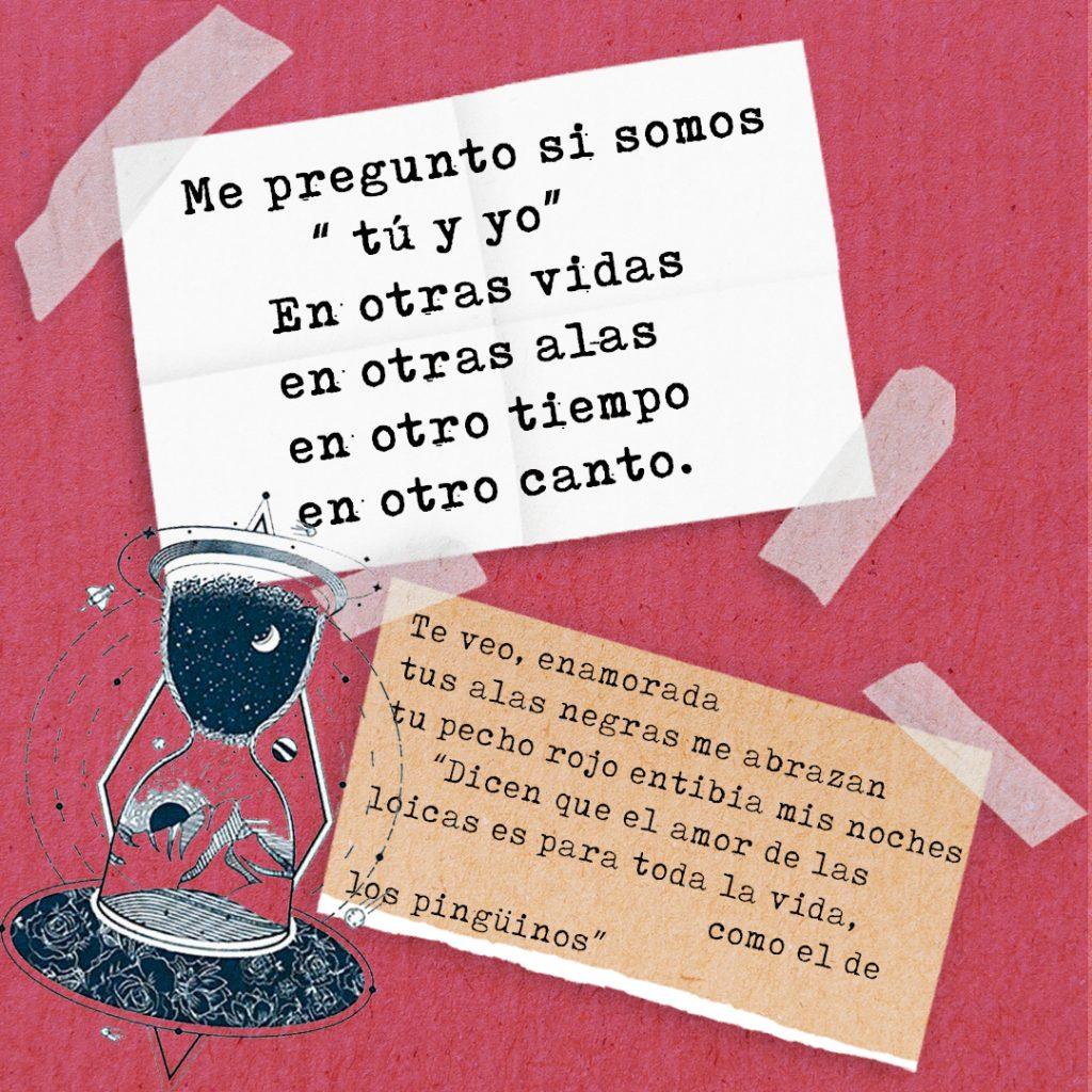 Collage sobre el amor, con extractos de poema Dos Licas de Jáquima Jade