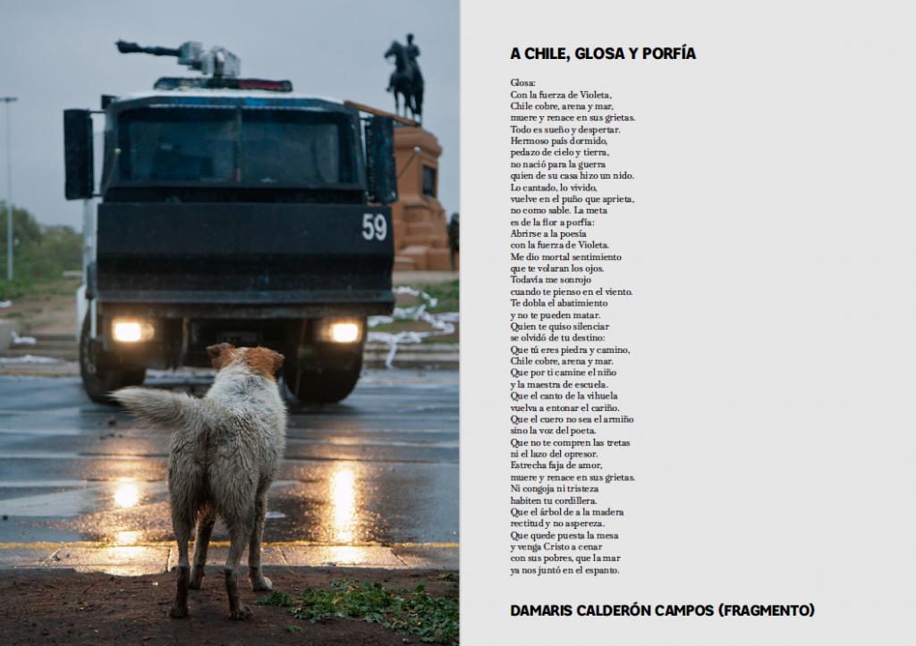 extracto de ARDE 2.0 - fotografía de Iván Martínez y poema de Damaris Calderón